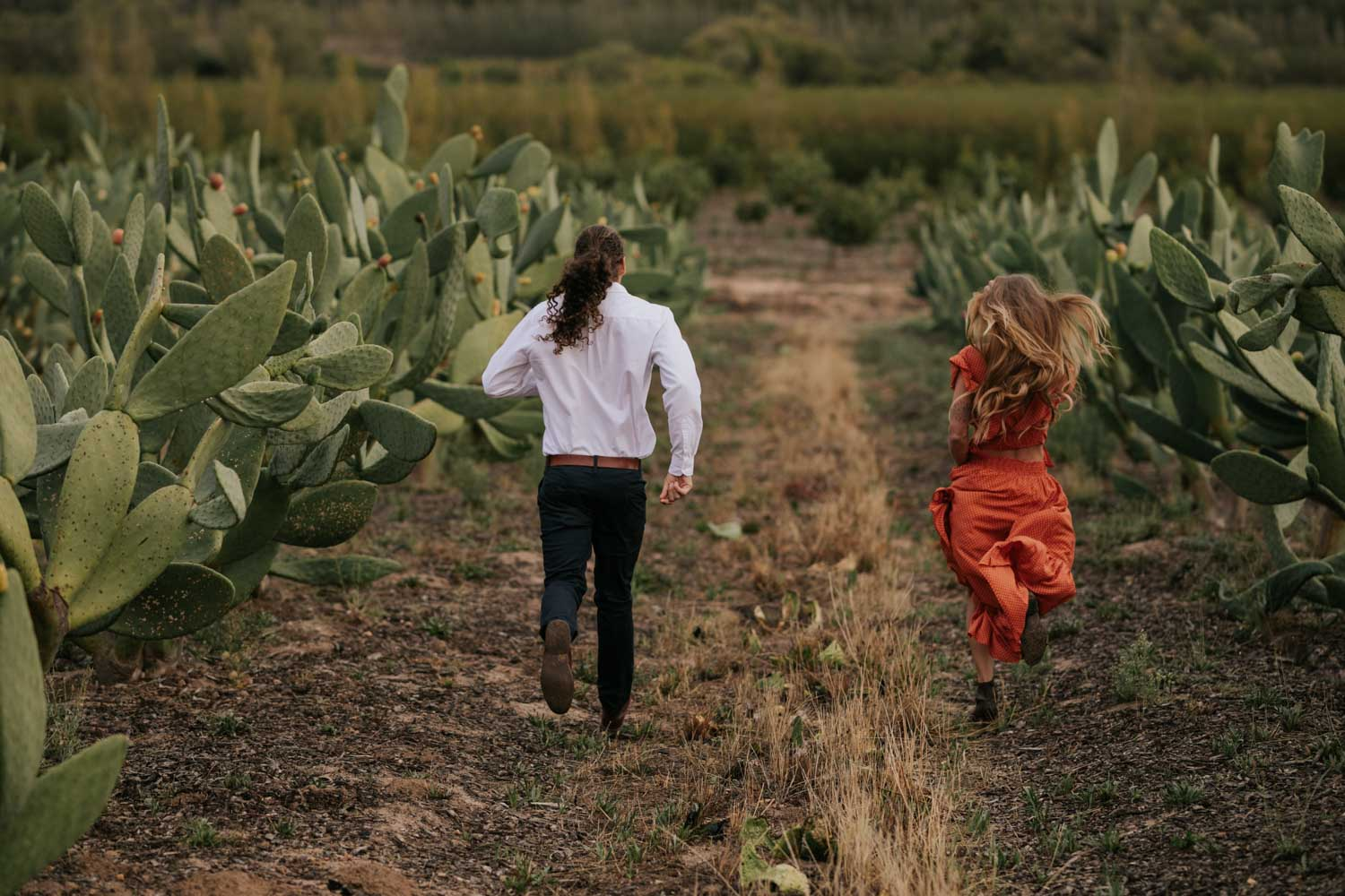 Boho Long Haired Couple Run In Cactus Field At Babylonstoren Cape Town