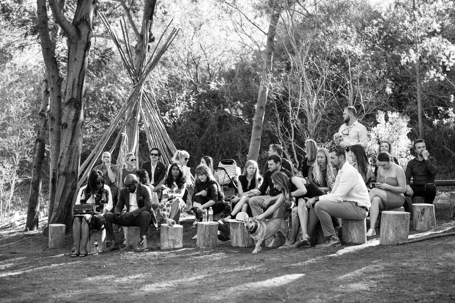 Wedding guests sitting on log stumps in a forest waiting for the bride and groom to get married, in Tulbagh, Cape Town
