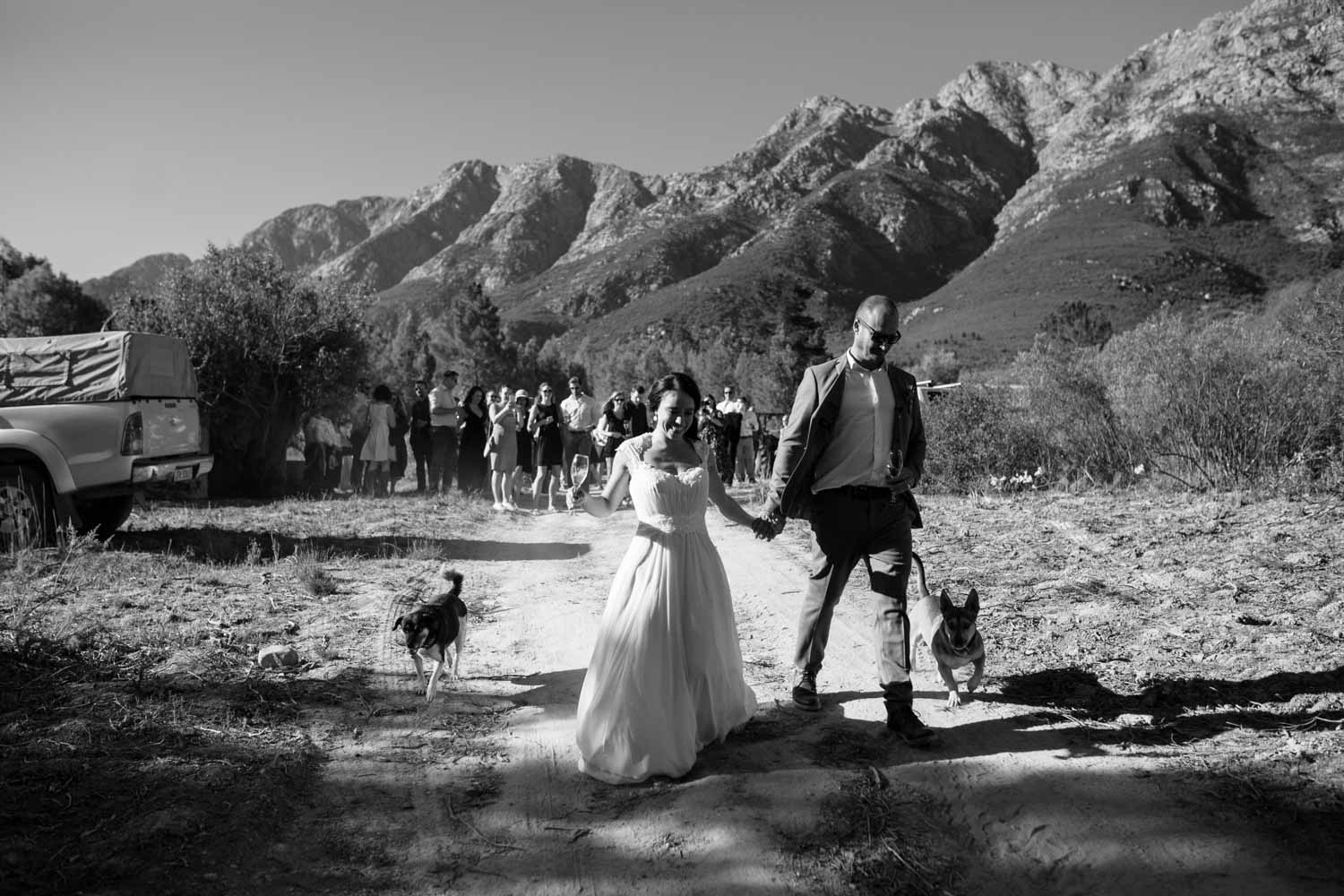 Bride and groom running down farm road with their dogs, surrounded by mountains, leading their guests towards the farmhouse ruins where their reception will be held.
