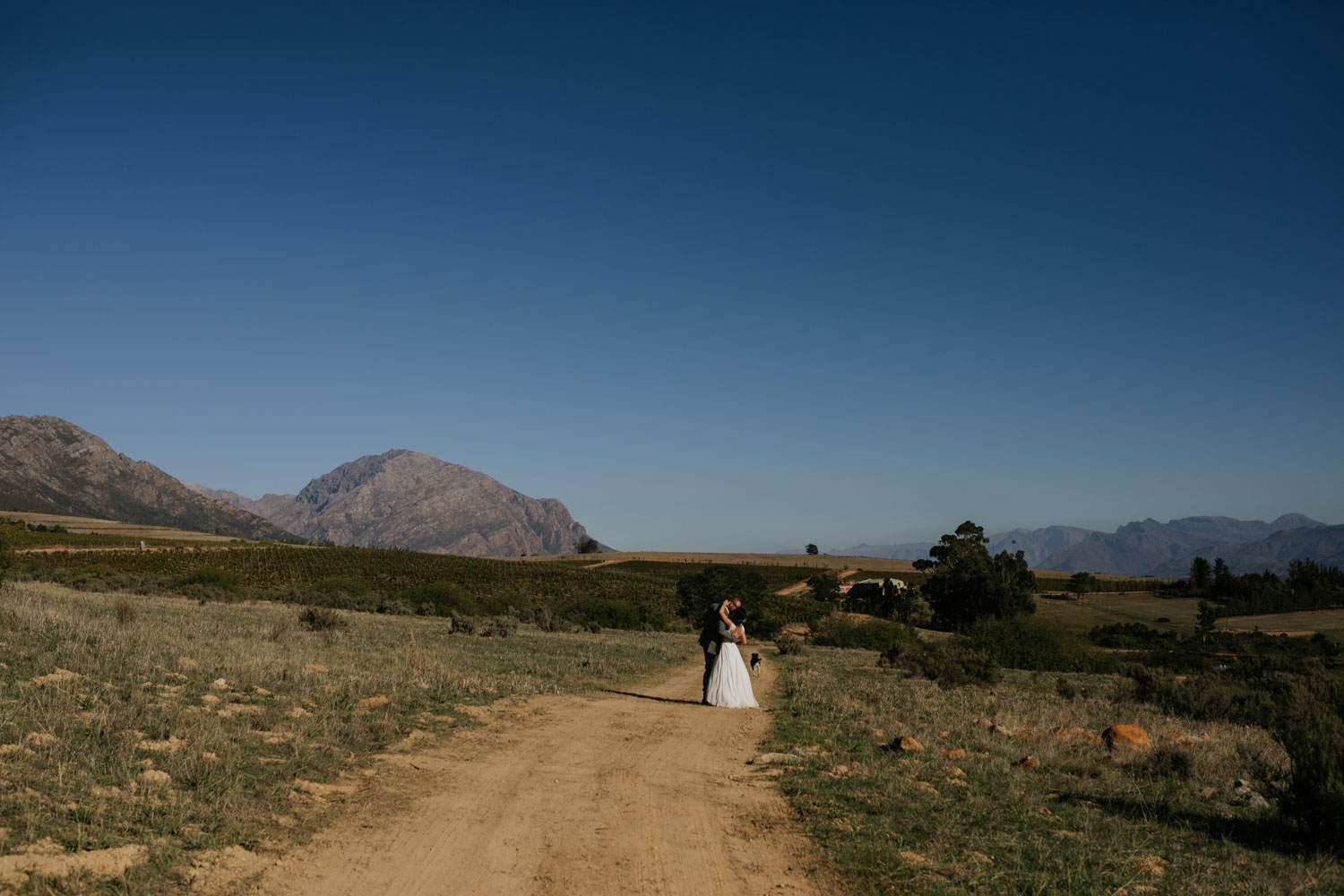 Bride and groom kissing each other affectionately on a dusty farm road in Tulbagh, near Riebeek Kasteel.
