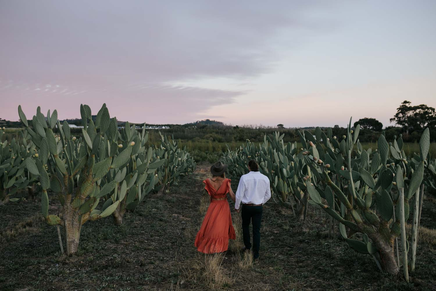 Boho Engagement Photo Shoot in Cactus Field at Babylonstoren