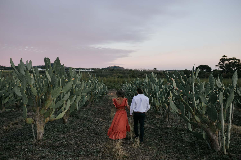 Boho Engagement Photo Shoot in Cactus Field at Babylonstoren