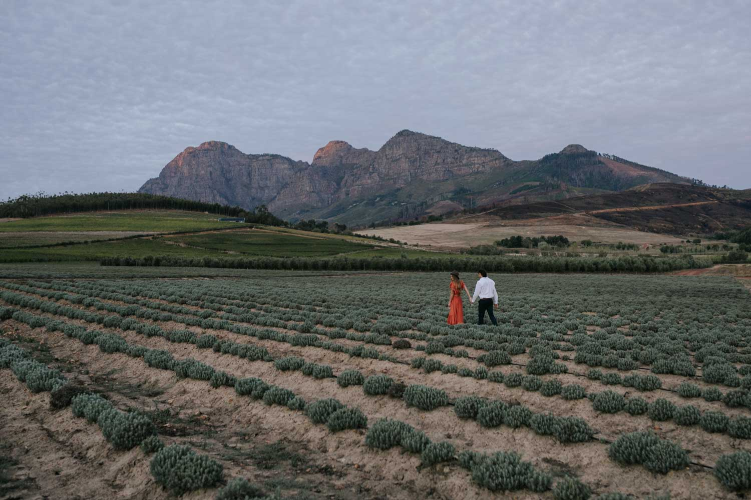 Boho Gypsy Couple Engagement Shoot Walk In Babylonstoren Farm Fields Below Mountains