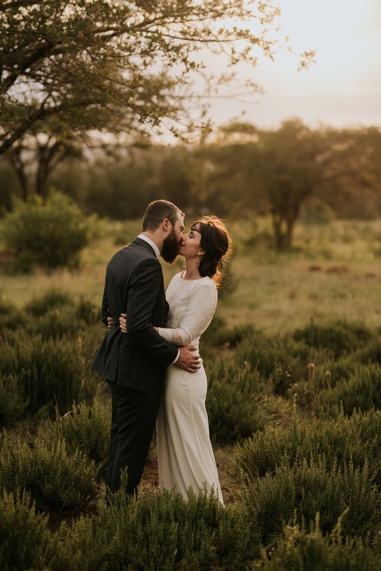 Newlyweds kiss under a tree in a field with golden light shining behind them at The Greenhouse Cafe at Rosemary Hill Farm in Pretoria