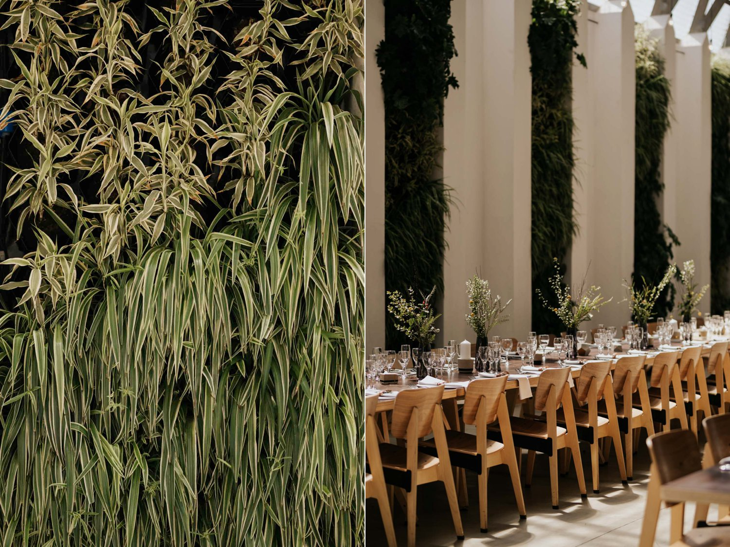 Hanging wall plants and lush greenery for wedding decor at Greenhouse Cafe