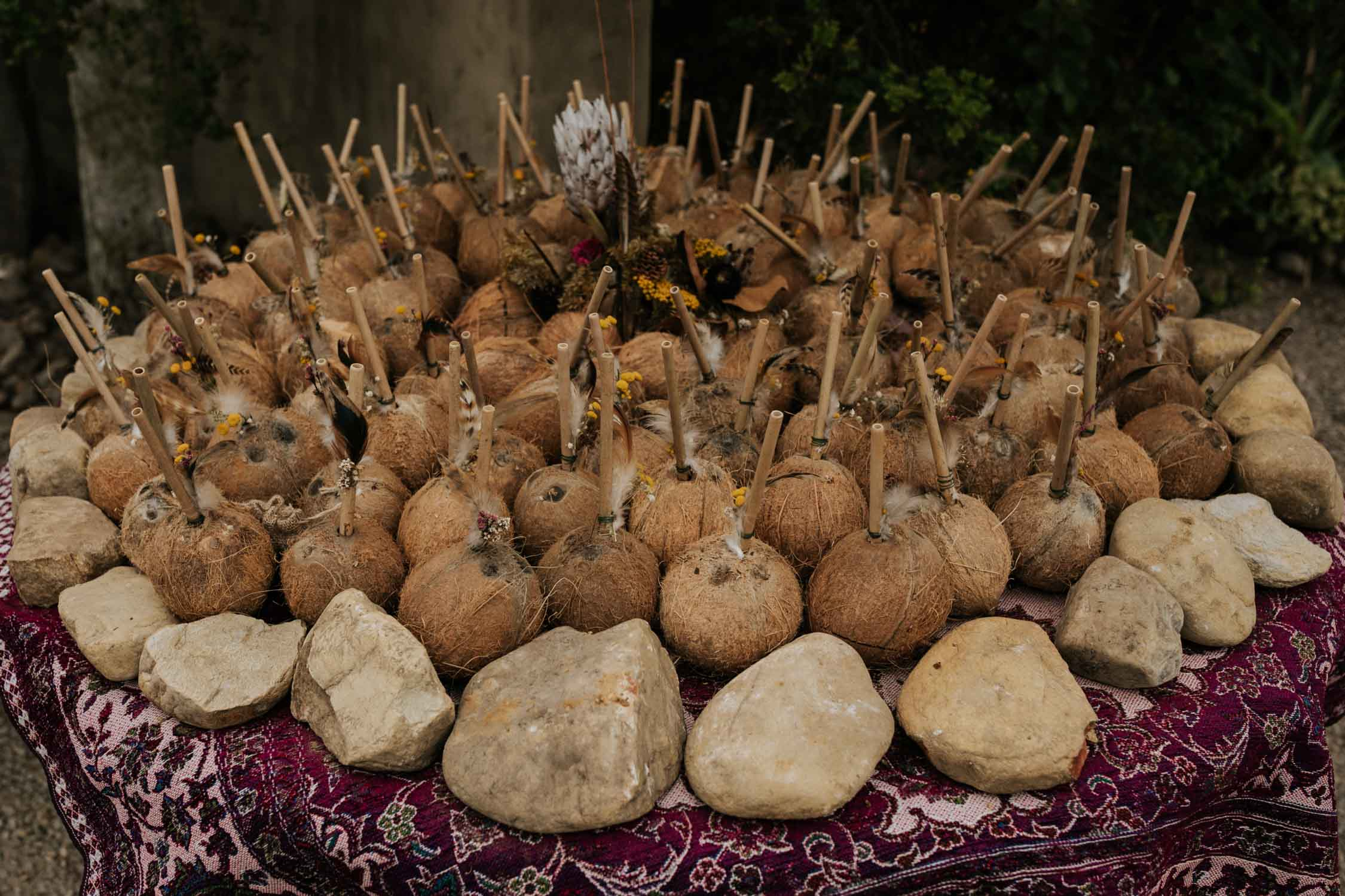 Real coconuts with wooden straws for cocktail hour refreshments