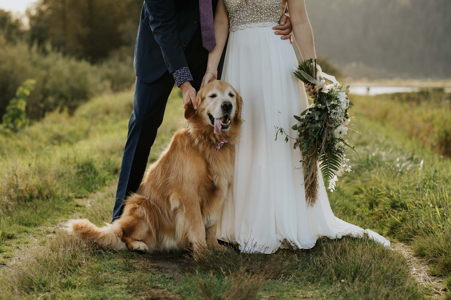 Beautiful, amazing bride and groom wedding portraits with their dog