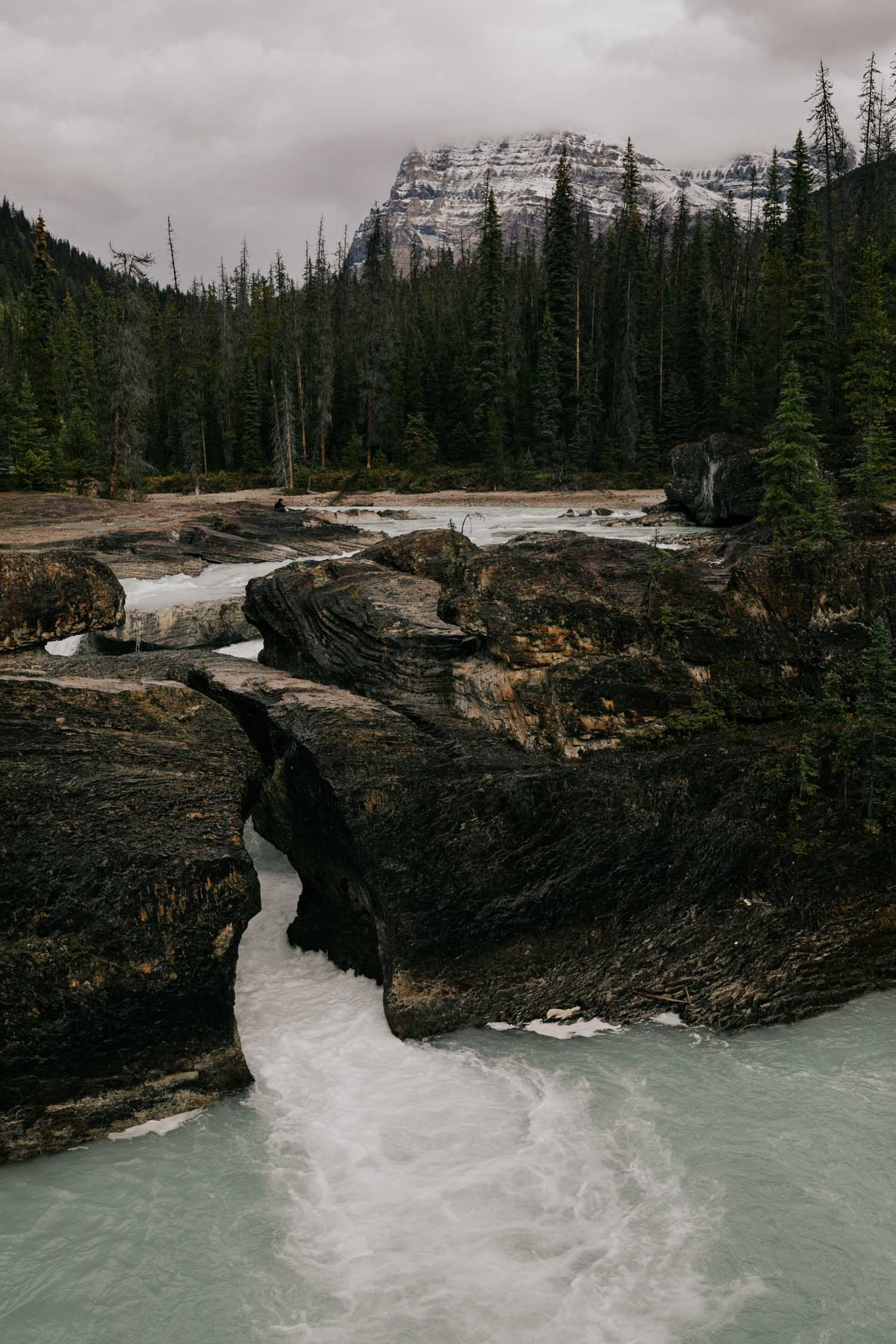 Natural Bridge Yoho Elopement