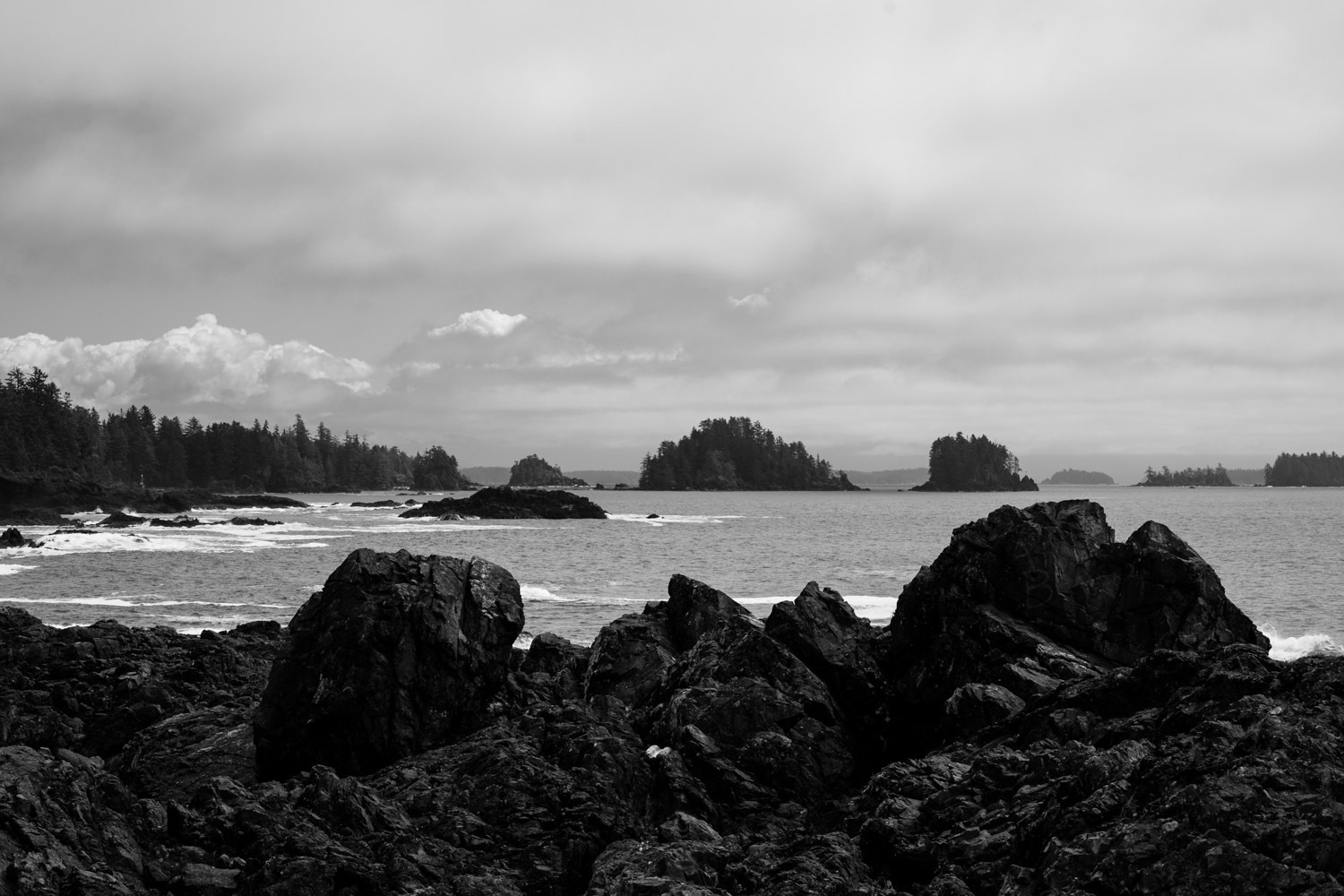 Best Place to elope in Tofino